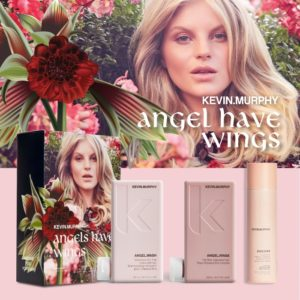 Kevin Murphy Angel Have Wings